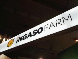 montaje de stand para Ingaso Farm