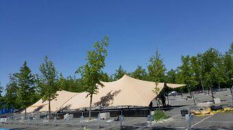 Carpas y carpas beduinas (6)